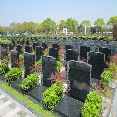 艺术墓178000