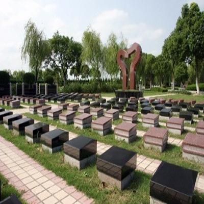 草坪葬125800